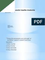 Anatomia sinusului maxilar.pptx