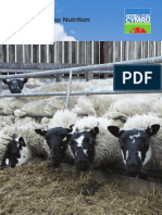 Practical Sheep Nutrition_1