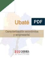 6233 Caracteriz Empresarial Ubate (1)