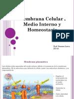 Clase 3 - BT - Membrana Celular, Medio Interno y Homeostasis