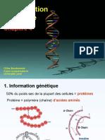 Info Génétique