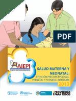 AIEPI, SALUD MATERNA Y NEONATAL 2014.pdf