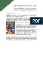 FR Le Bangladesh a Ratifié La Convention Internationale Relative Aux Droits de l'Enfant en 1990 Et s'Est Engagé à Respecter