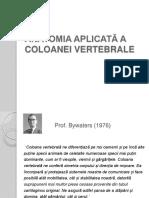 anatomie COLOANA-VERTEBRALA