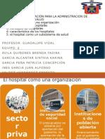 el hospital como una organizacion