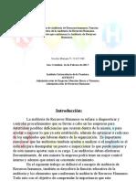 Auditoria de Recursos Humanos Mariana Useche 23827969