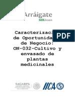 Caracterizacion de Oportunidades de Negocio-On-032-Cultivo y Envasado de Plantas Medicinales