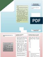 leaflet gigi 2.docx