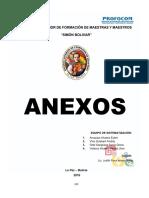 13 Anexos (Ok)