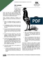 Anatomy_Skeletal.pdf