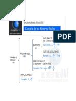 Esquema del conjunto de los números reales - academia JAF.pdf