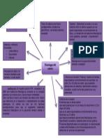 Mapa Mental Metodologia, fisiologia del estrés