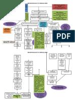 Pathophysiology of Chemical Burn