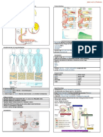32635656 Renal Excretion of Drugs