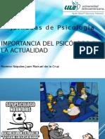 Importancia Del Psicólogo en La Actualidad