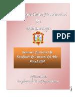 resumen_ejecutivo_rendicion_cuentas_2009.pdf