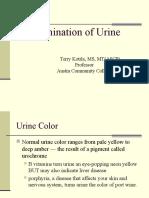 Phb Urinalysis