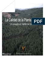 Calidad de Plantas y Reforestacion Bogota08