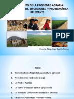 Saneamiento de la Propiedad Agraria, procedimientos, situaciones y problemática