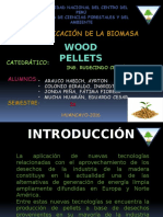 PELLETS Densificación Exposición