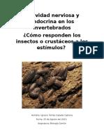 Actividad Nerviosa y Endocrina en Los Insectos