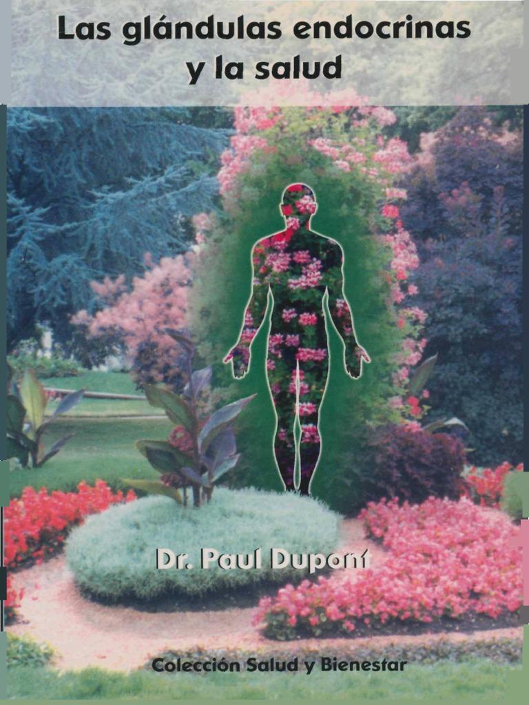 Las Glándulas Endocrinas y La Salud
