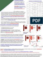 Tema3.TeoriaDislocaciones.MecanismosEndurecimiento.pdf