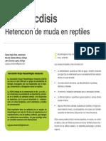 Exoticos -La Disecdisis- Retencion de Muda en Reptiles