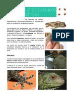 Parasitos Cutaneos en Reptiles