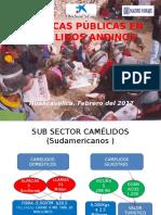POLITICAS PUBLICAS EN CAMELIDOS ENRIQUE + LOAYZA - copia