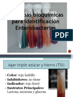 pruebas bioquimica