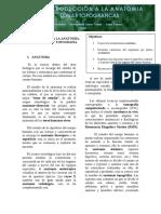 microsoft anatomia.pdf