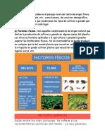 Factores S.P