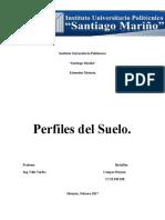 Perfil de Suelo Campos Reyzon