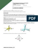 Taller Hibridacion Del Atomo de Carbono (7)