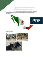 TERRITORIO, población y gobierno.docx