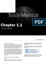 1 1 the Forex Market