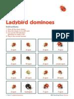 Activity ladybird dominoes.pdf