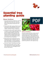 Activity tree planting guide.pdf