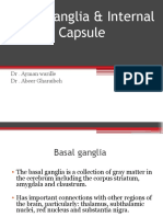 Basal Ganglia Modified