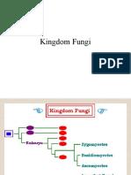 Kingdom Fungi.pptx