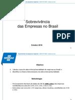 Sobrevivencia Das Empresas No Brasil Relatorio Apresentacao 2016