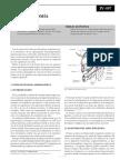 bazo.pdf