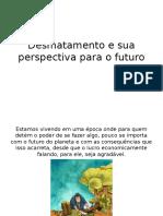 Desmatamento e Sua Perspectiva Para o Futuro