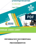 Expo Documentos Ohsas 18001 - 2007