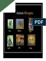 Animais Domésticos Selvagens