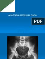 Anatomia Bazinului Osos