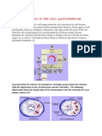 59597105-Cell-Division.pdf