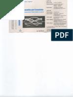 audio Righini - presentazione 1.pdf