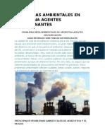 Problemas Ambientales en Argentina Agentes Contaminantes